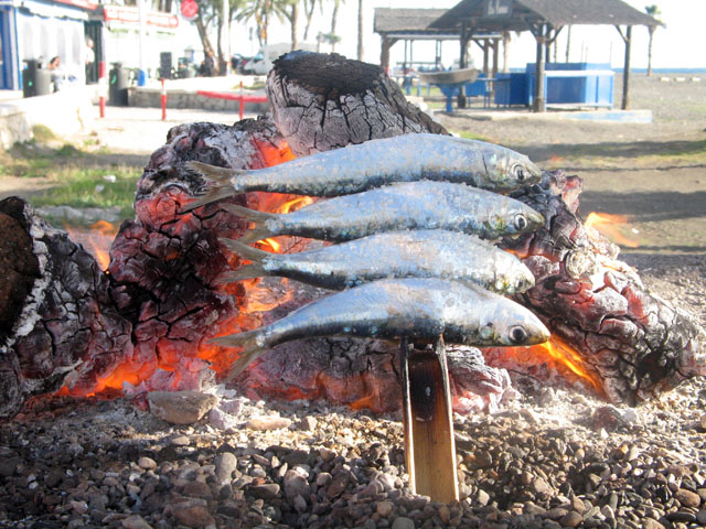 Grilled sardines on the beach